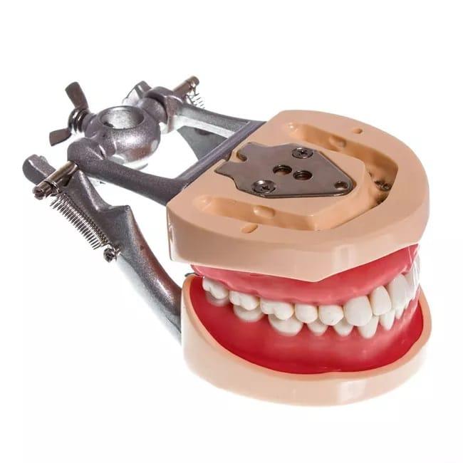 ПроизводительHST МодельHST000131 Материал Пластмасса Резина Сталь Область применения Ортодонтия Ортопедия Терапия Хирургия
